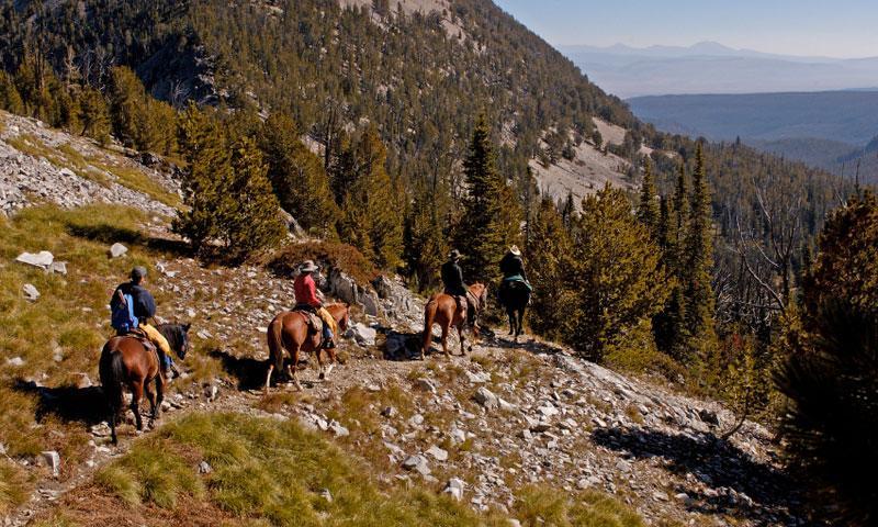 Montana Bitterroot Mountains Horseback