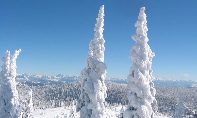 Whitefish Montana Big Mountain Resort Winter