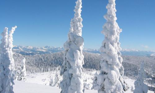 Whitefish Mountain Ski Resort Montana