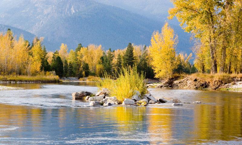 Bitterroot River in Autumn