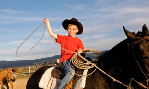 Missoula Montana Horse Trips