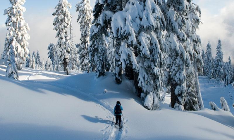 Missoula Montana Snowshoeing